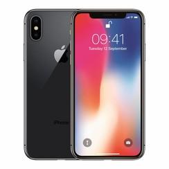 iPhone X 256GB - Grijs (190198458353 )