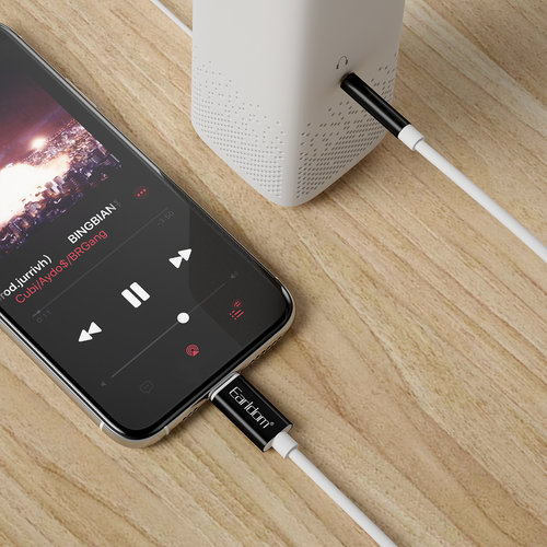 Earldom AUX Audio to Lightning Cable - Black