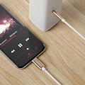 Earldom AUX Audio to Lightning Cable - Gold
