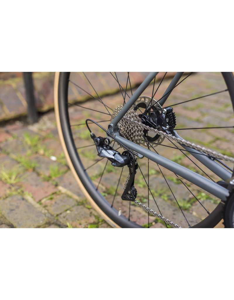 Seabass Cycles X Ritchey Logic Disc 53cm