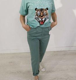 Andere Marken Tiger Shirt Mint