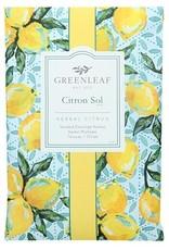 Greenleaf  Citron Sol - groß