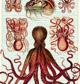 VINTAGE POSTER - Octopods (50x70cm)