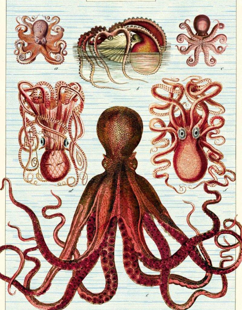 AFFICHE VINTAGE - Octopods (50x70cm)