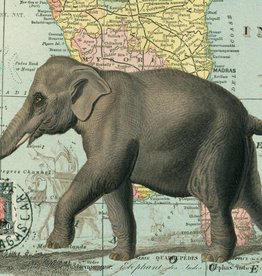 ELEPHANT - WRAP SHEET 70cm X 50