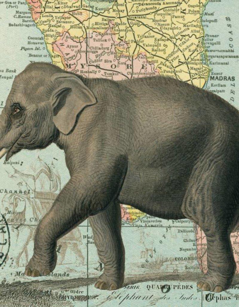 AFFICHE VINTAGE - Eléphant (70x50cm)