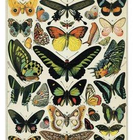 VINTAGE GREETING CARD - Butterflies