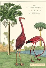 VINTAGE POSTER - Flamingo (50x70cm)