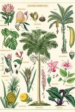 TROPISCHE PLANTEN VINTAGE POSTER  50 x 70