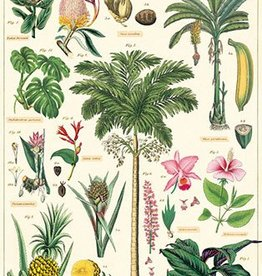 VINTAGE POSTER - Tropical Plants (50x70cm)