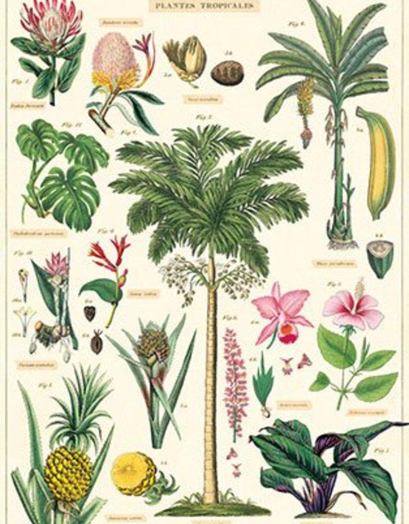 AFFICHE VINTAGE - Plantes Tropicales (50x70cm)