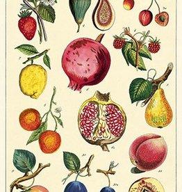 AFFICHE VINTAGE - Fruits No. 2  (50x70cm)