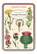 VINTAGE POSTCARDS SET - Wildflowers