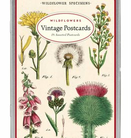 VINTAGE POSTCARDS SET - Wildflowers