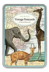 VINTAGE POSTCARDS SET - Animals