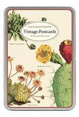 VINTAGE POSTKAARTEN SET - Cactussen & Succulenten