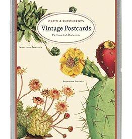 Vintage postkaarten set - cactussen & vetplanten