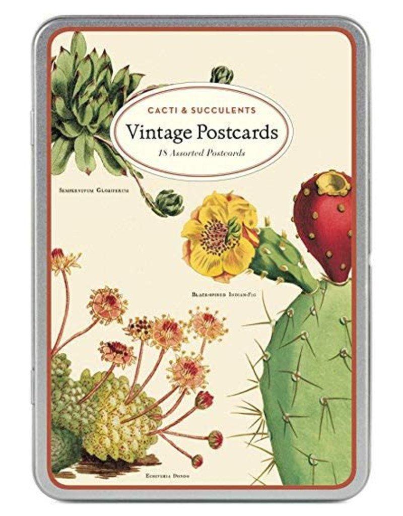 VINTAGE POSTCARDS SET - Cacti & Succulents