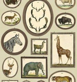 NATURAL HISTORY ANIMALS - WRAP SHEET 50cm X 70