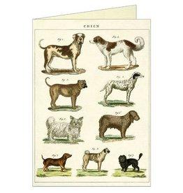 DOG CHART - GREETING CARD & ENVELOPE
