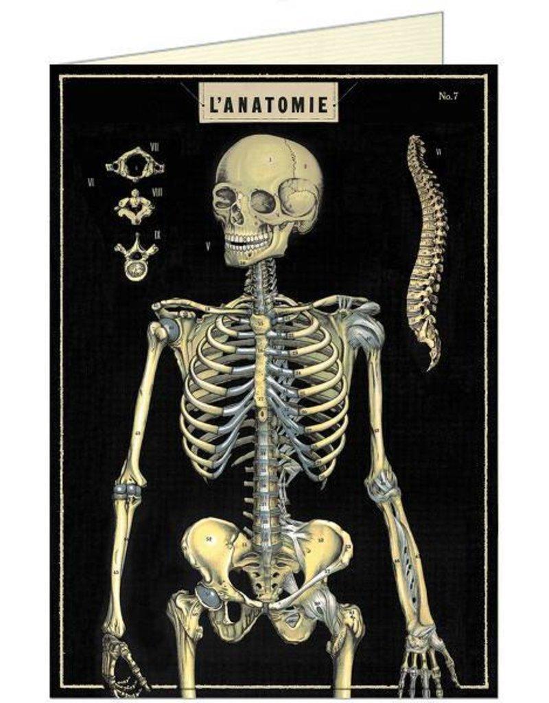 VINTAGE GREETING CARD - Anatomy