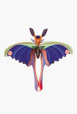 DIY DECORATION MURAL - Papillon-Comète de Madagascar Bleu