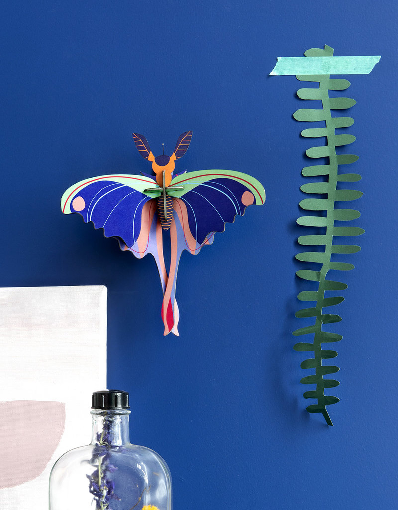 DIY WALL DECORATION - Blue Comet Butterfly