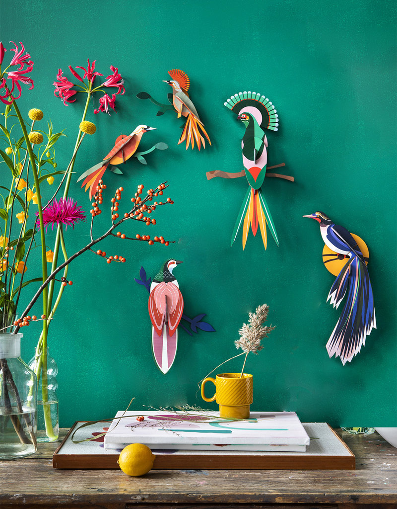 DIY WALL DECORATION - Birds of Paradise -  Obi