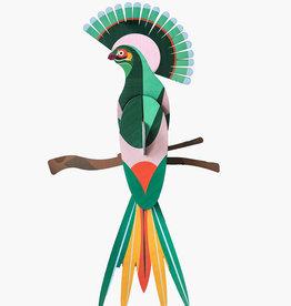 Paradijsvogel Gili