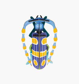 DIY WALL DECORATION - Rosalia Beetle