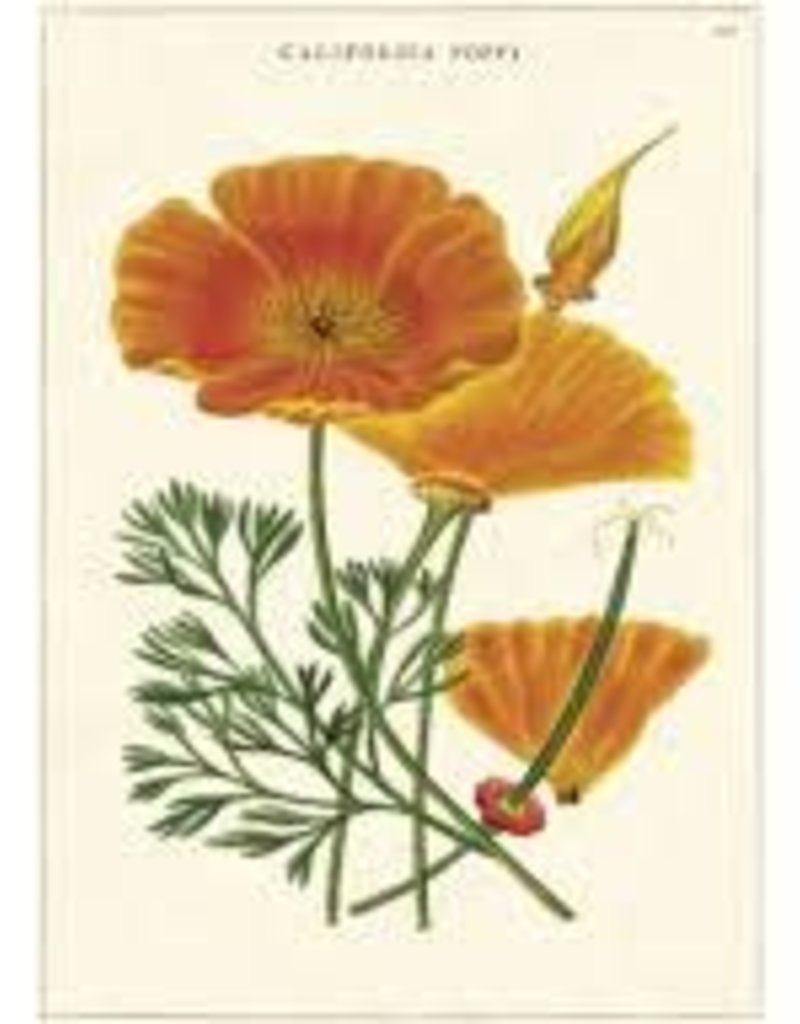 VINTAGE GREETING CARD - California Poppy