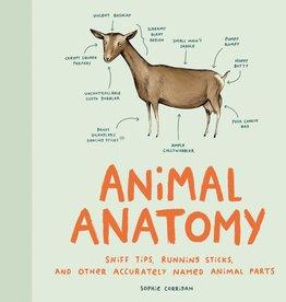 ANIMAL ANATOMY - Sophie Corrigan
