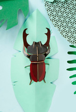 DIY WALL DECORATION - Stag Beetle