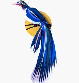 Paradijsvogel Flores