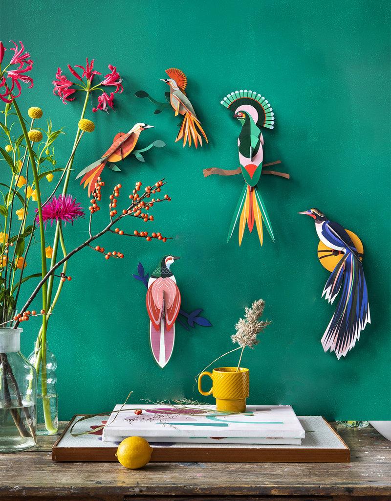 Paradijsvogel Flores - Muurdecoratie