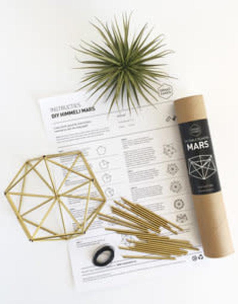 DIY plantenschaal Mars