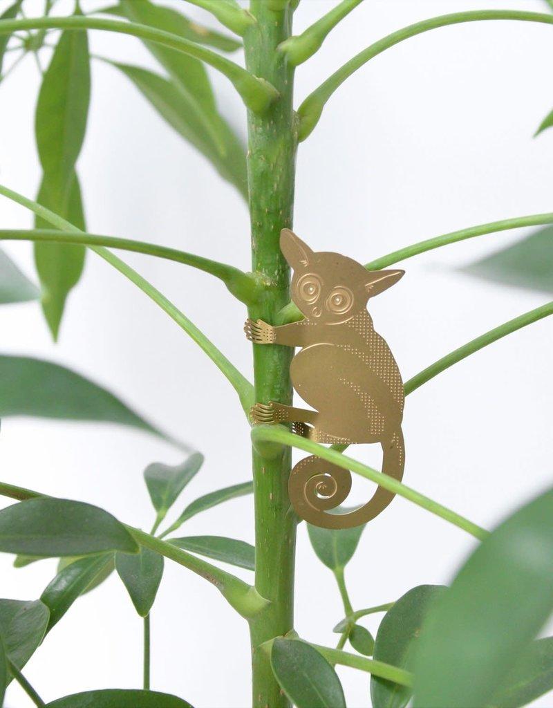 GOUDEN PLANTENHANGER - Galago