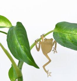 GOUDEN PLANTENHANGER - Boomkikker