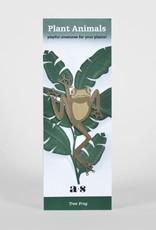 CINTRE DORE PLANTE - Grenouille Arboricole
