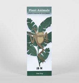 Gold plant animal - tree frog