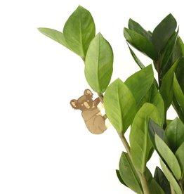 GOLDEN PLANT HANGER - Koala