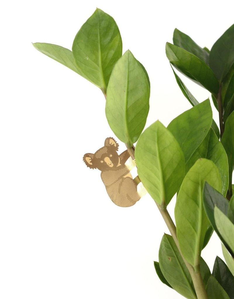GOUDEN PLANTENHANGER - Koala