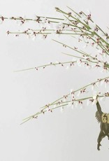 GOUDEN PLANTENHANGER - Orang-Oetan