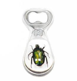 Animaux Spéciaux BOTTLE OPENER - Green Beetle