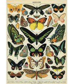 AFFICHE VINTAGE - Papillons (50x70cm)