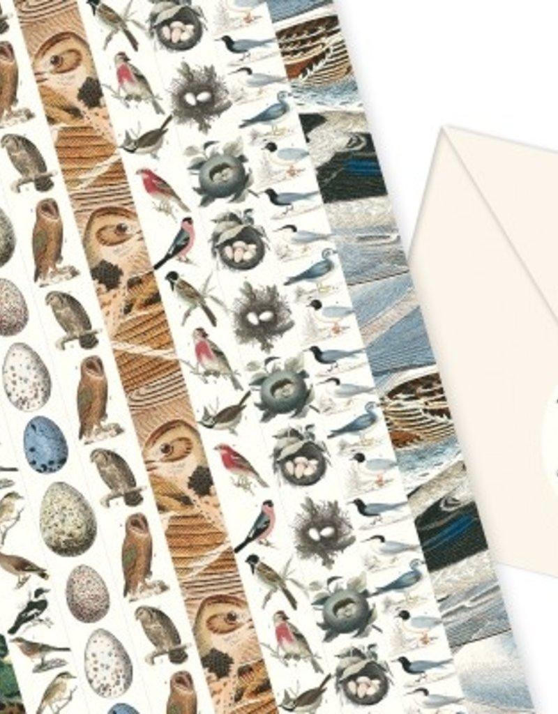 PEPIN label & sticker boek - fauna