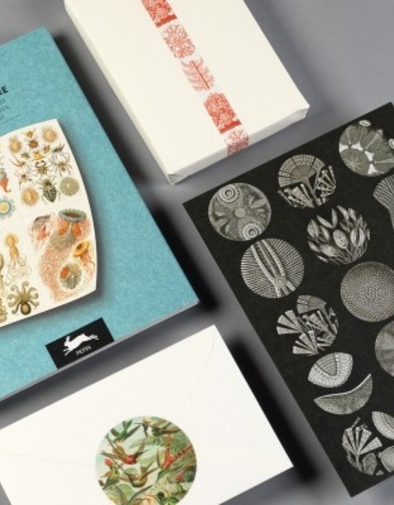 LABEL & STICKER BOOK - Art Forms in Nature