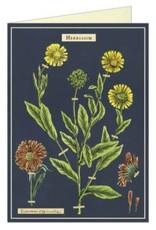 HERBARIUM GREETING CARD & ENVELOPE