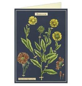 VINTAGE GREETING CARD - Herbarium