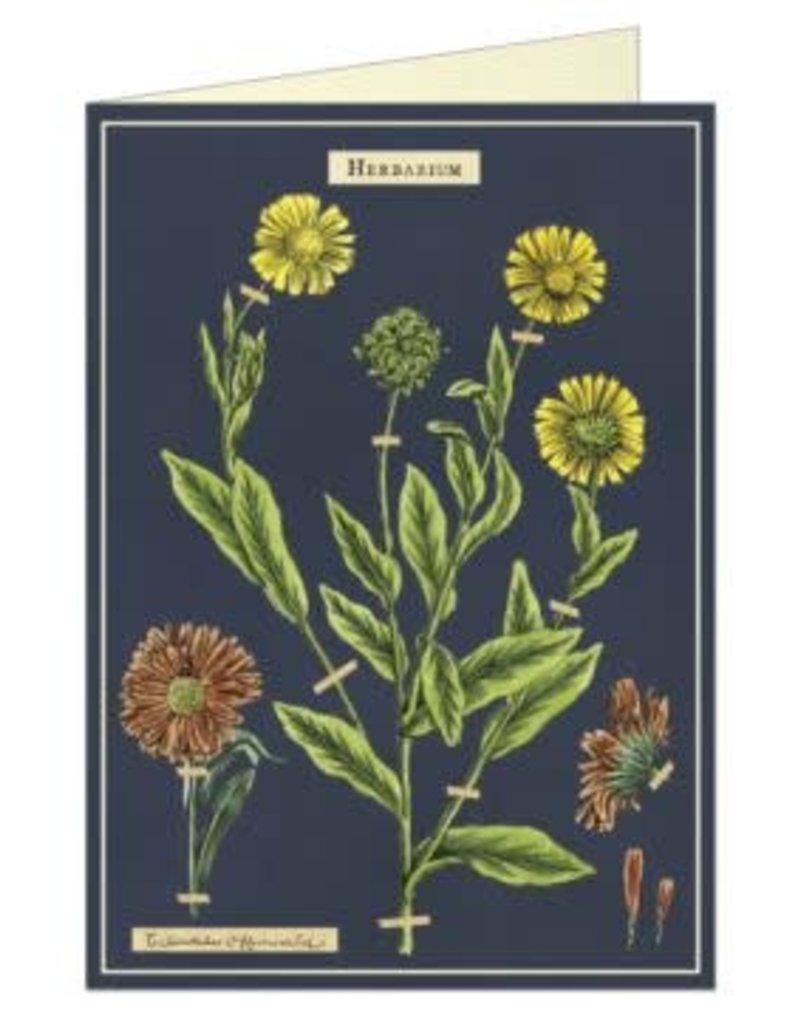 VINTAGE WENSKAART - Herbarium